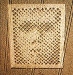 Crop circle face, August 14, 2001